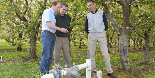 Above, Irrigation Scheduler developer R. Troy Peters, left, talks with AgWeather Net Director Gerrit Googenboom and AgWeatherNet Web Developer Sean Hill. Photo: Washington State University